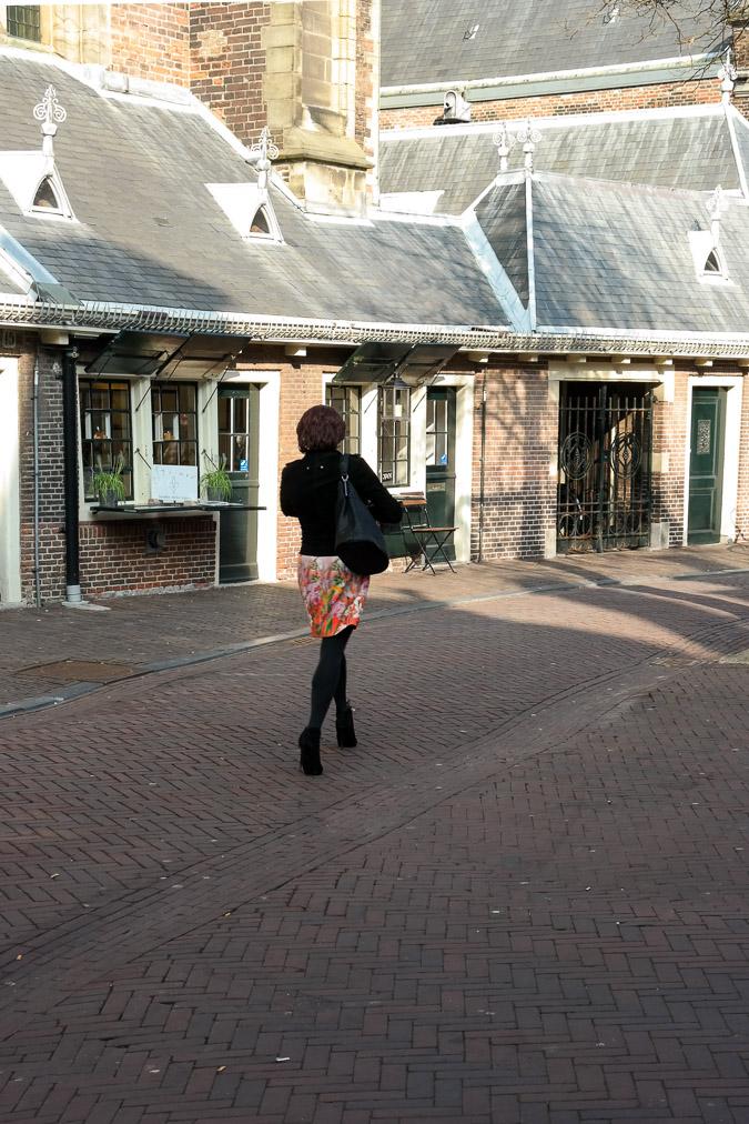 Main church of Haarlem St Bavo (4)-6
