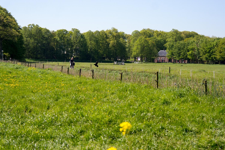 View from Het Wapen van Kennemerland