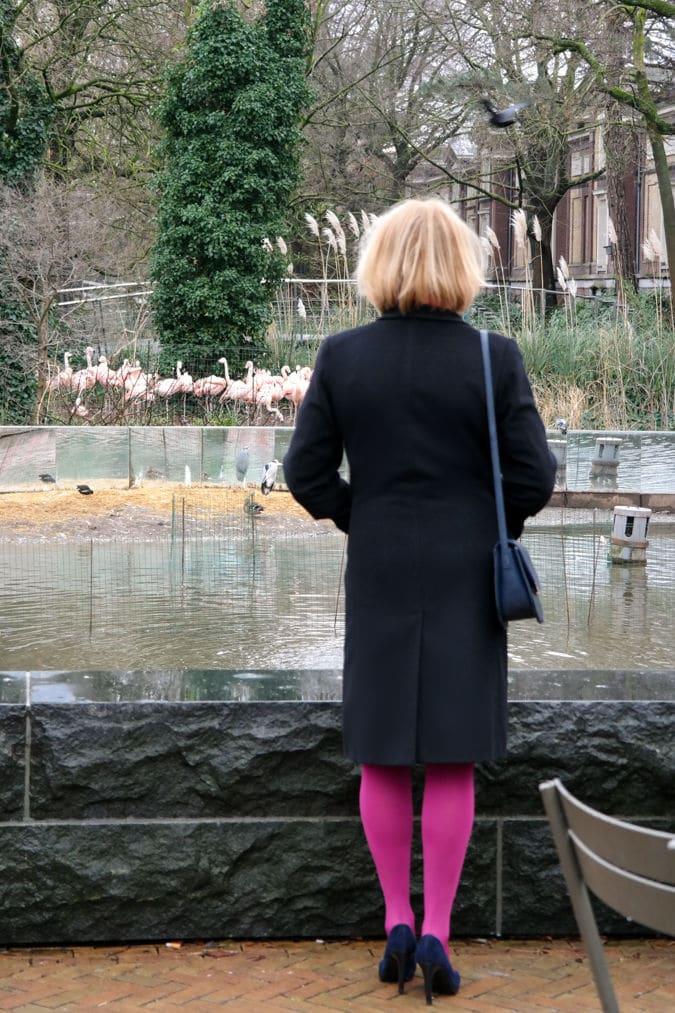 Black Max Mara coat and bright pink tights