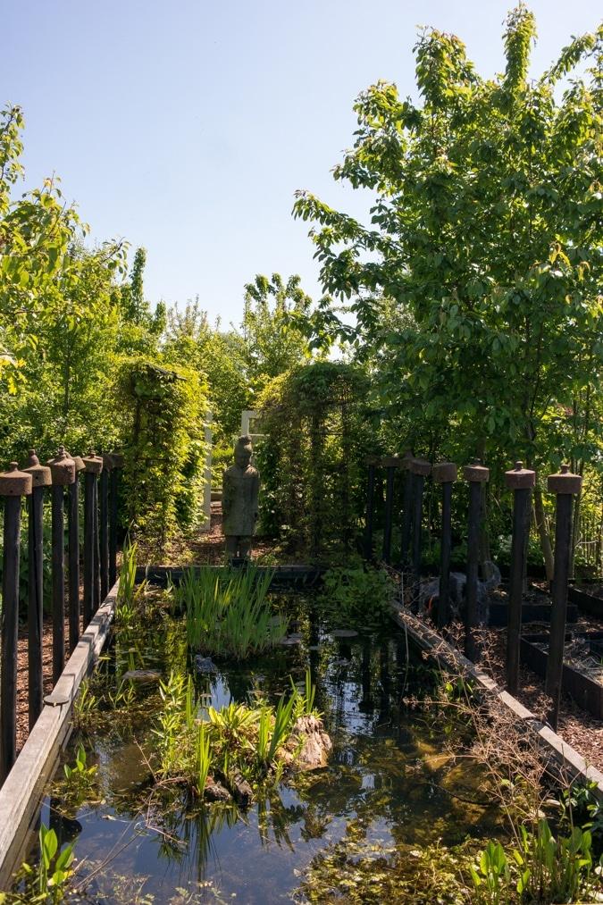 Allotment garden