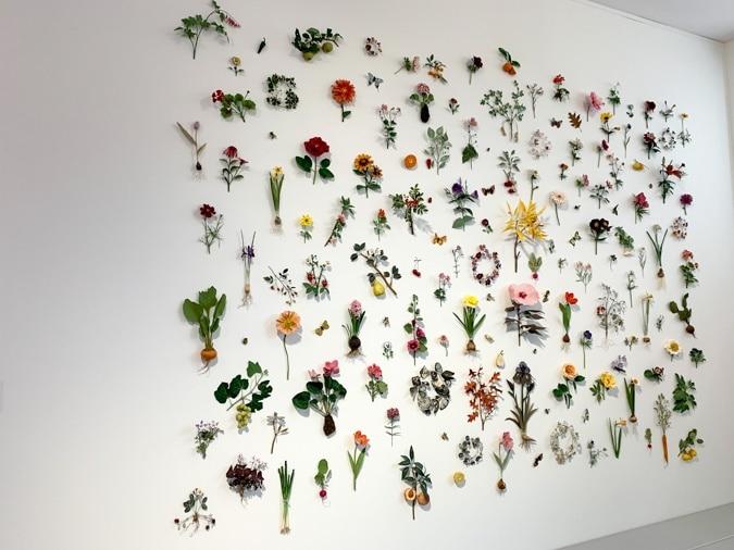 Botanical paper art wall by Ann Wood