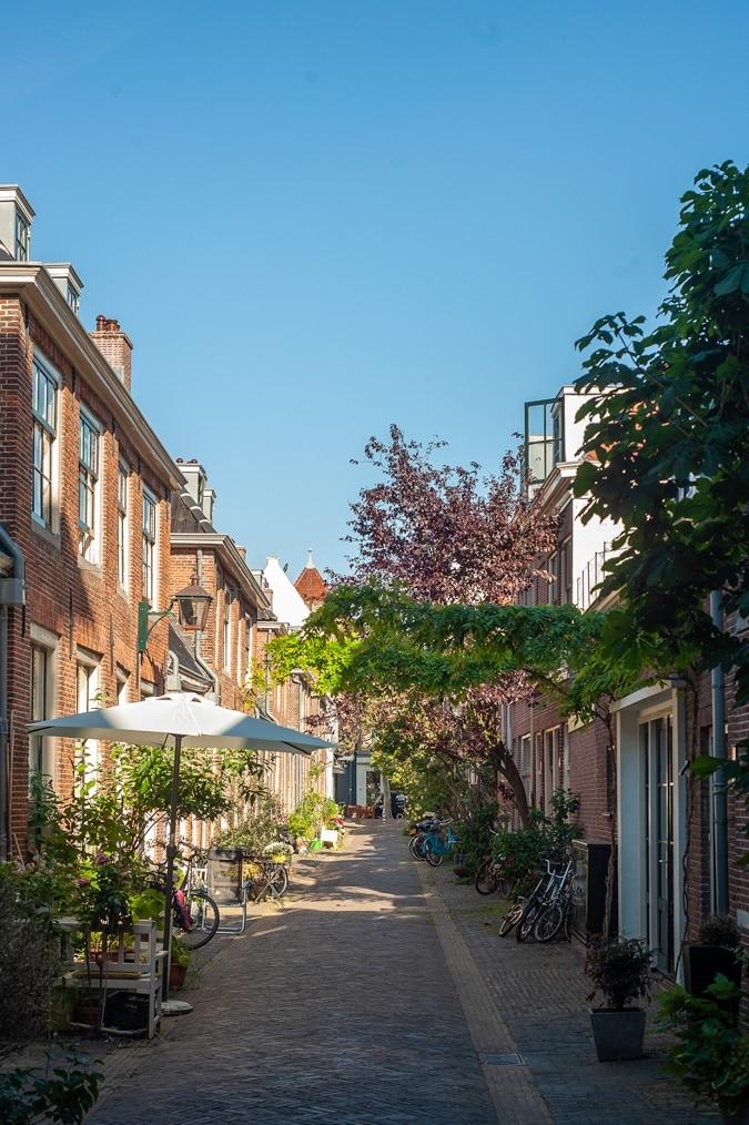 Haarlem the Vijfhoek