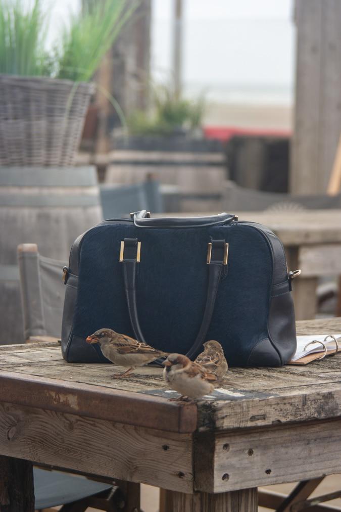 Blue bag and birds